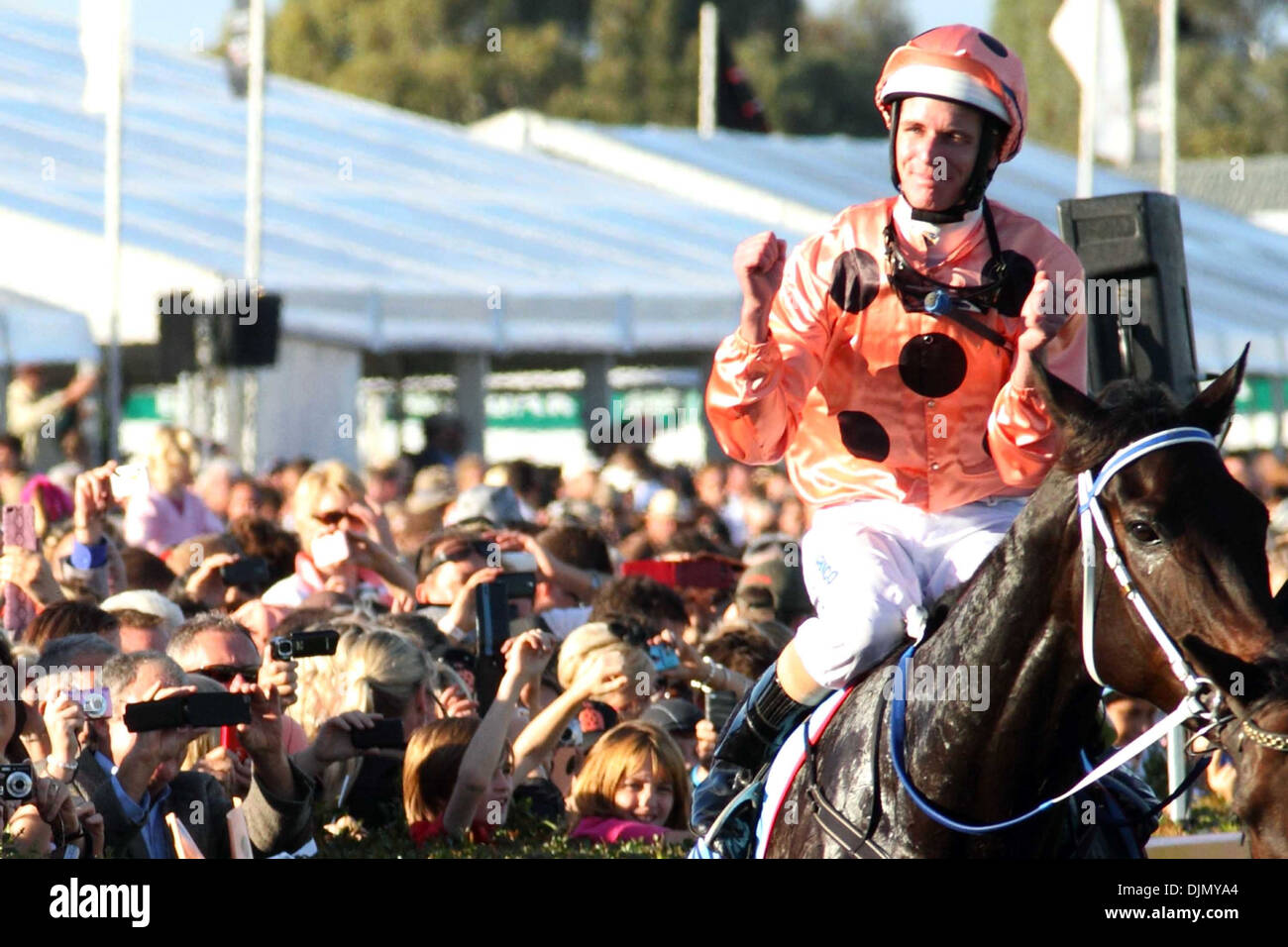 Jockey Luke Nolen Black Caviar stormed into record books and ensured an eternal place in horse racing history when she took her - Stock Image