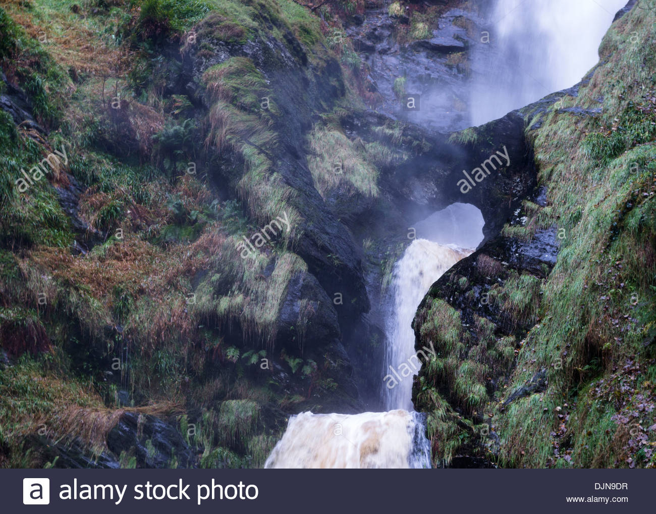 Forces of nature - Stock Image