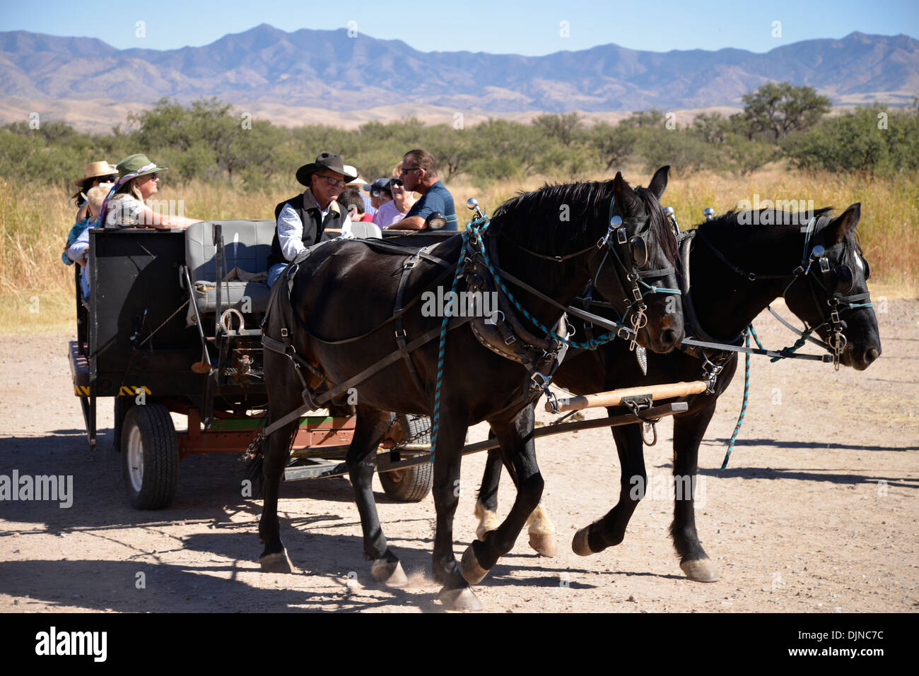 The Roundup & Open House, a celebration of the cowboy, at the Empire Ranch, Sonoita, Arizona, USA. Stock Photo