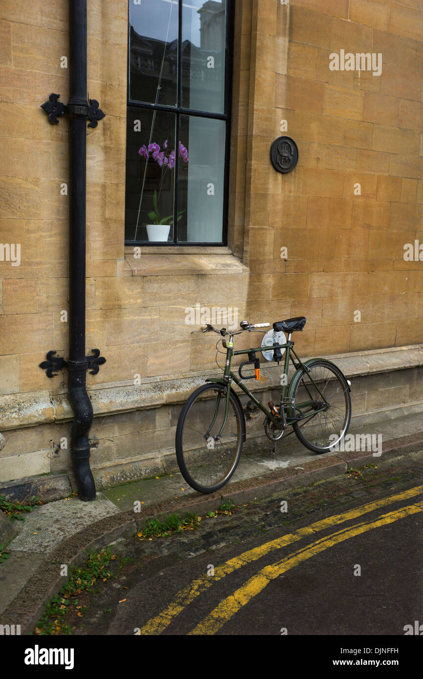 Cambridge University, Bicycle and Orchid. Cambridge, England, UK. 29-11-2013 - Stock Image