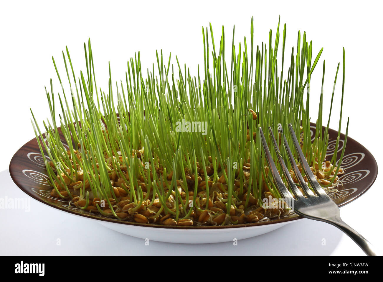 wheat germ in bowl on white background - Stock Image