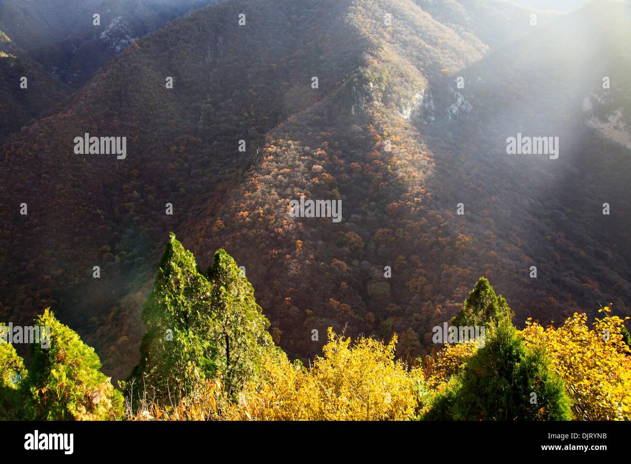 Mian Stock Photos & Mian Stock Images - Alamy