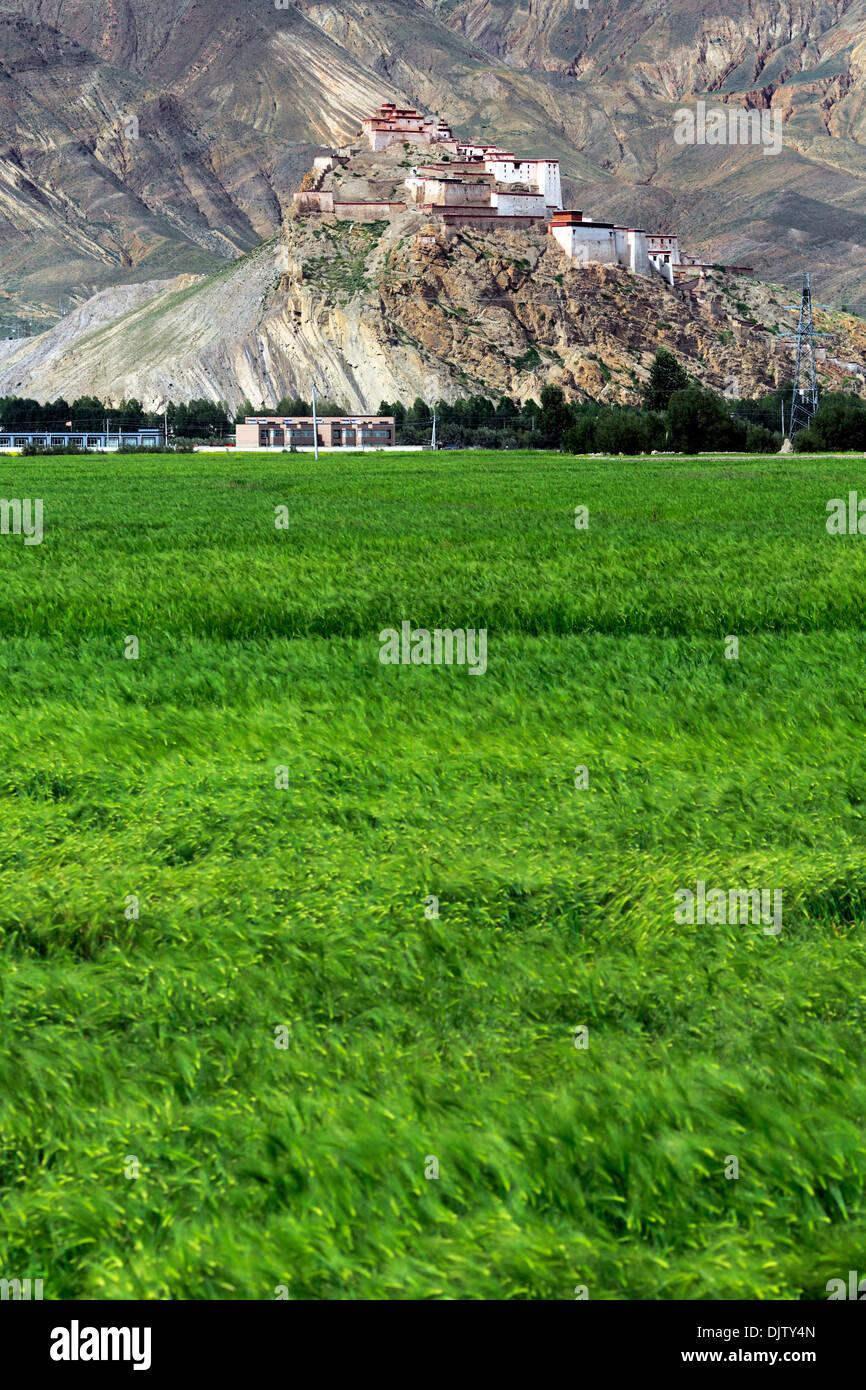 Gyantse Dzong, Gyantse County, Shigatse Prefecture, Tibet, China Stock Photo