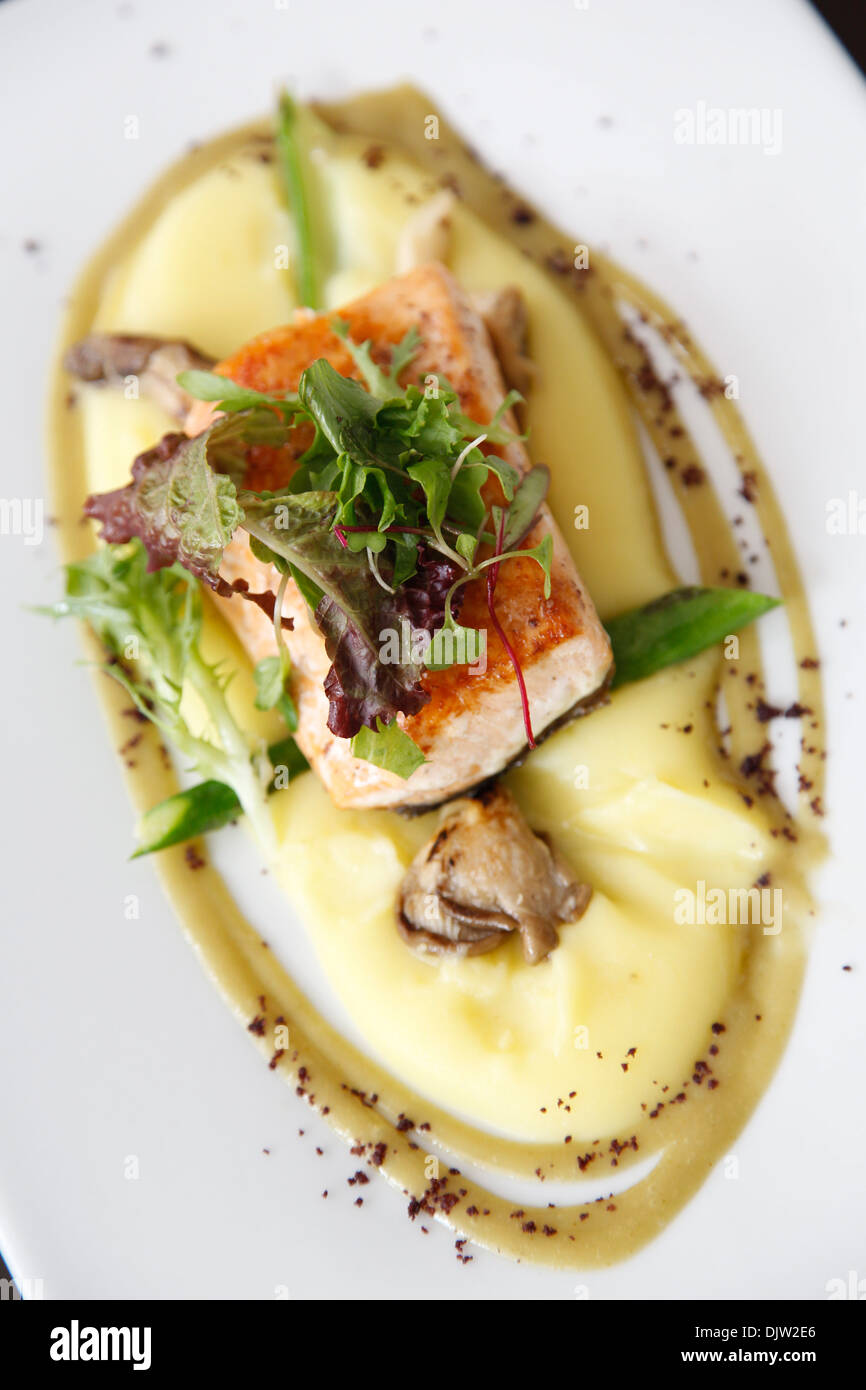 Olive perfumed Salmon over yellow potato and olive oil emulsion, Cuzco, Peru. - Stock Image
