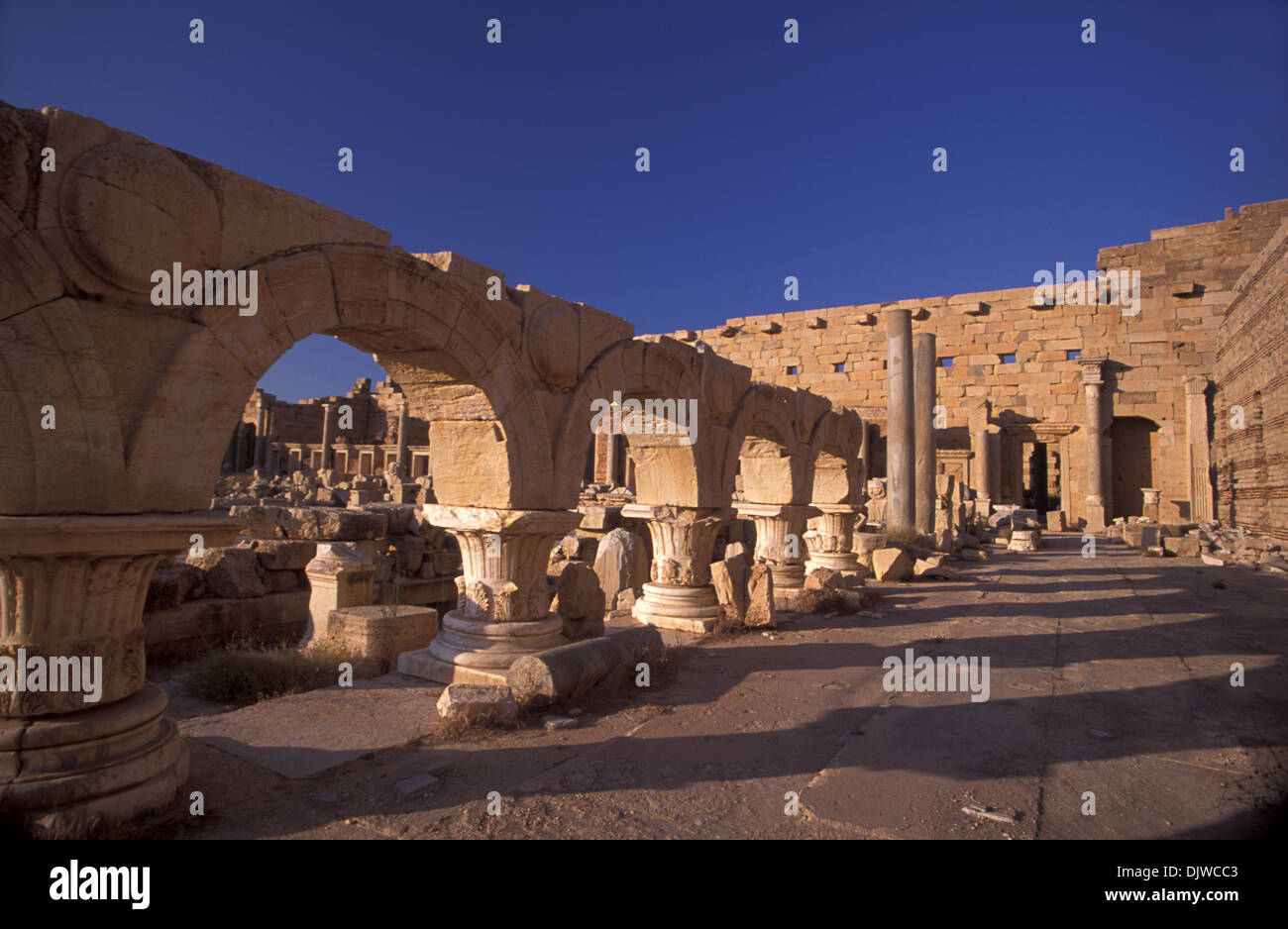 Severan forum, Leptis Magna, Lybia - Stock Image