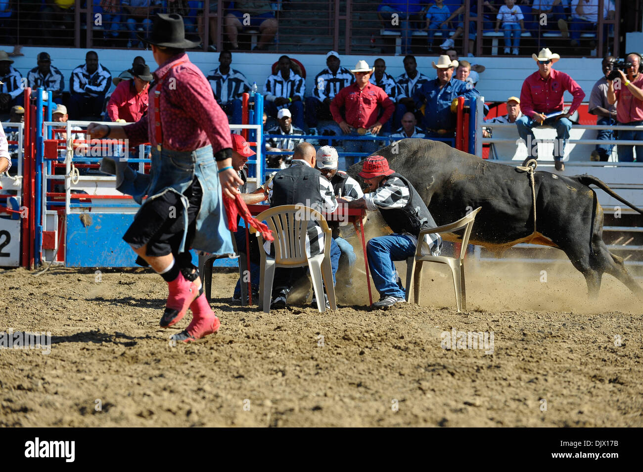 Prison Rodeo Bull Stock Photos Amp Prison Rodeo Bull Stock