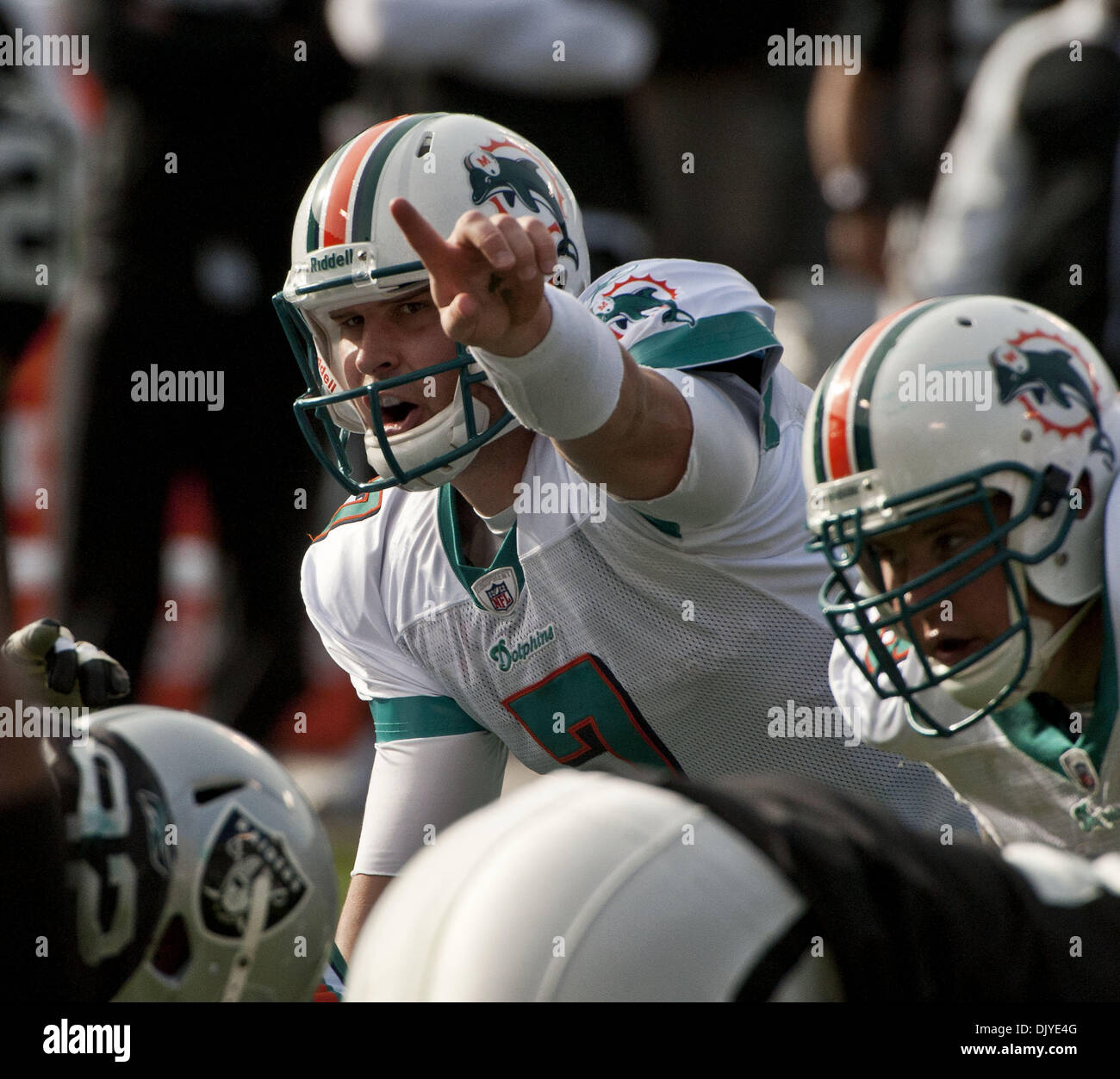 421ec17da Chad Henne Stock Photos & Chad Henne Stock Images - Alamy