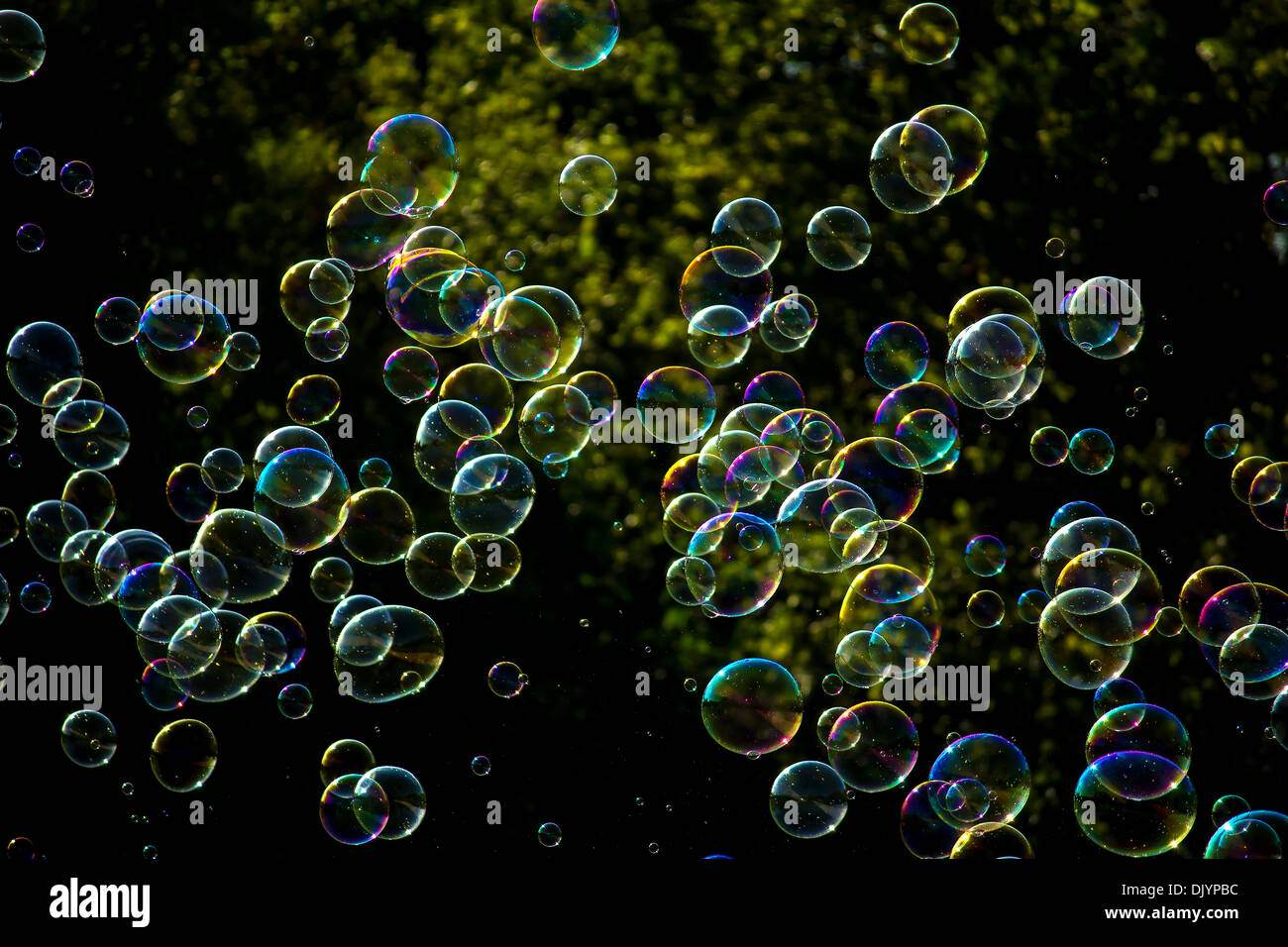 colorful floating soap bubbles in the air - Stock Image