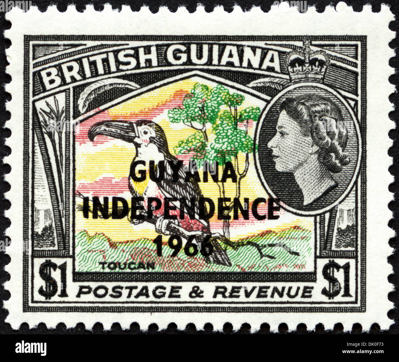 postage stamp British Guiana $1 featuring Toucan overstamped with Guyana Independence 1966 issued 1966 - Stock Image