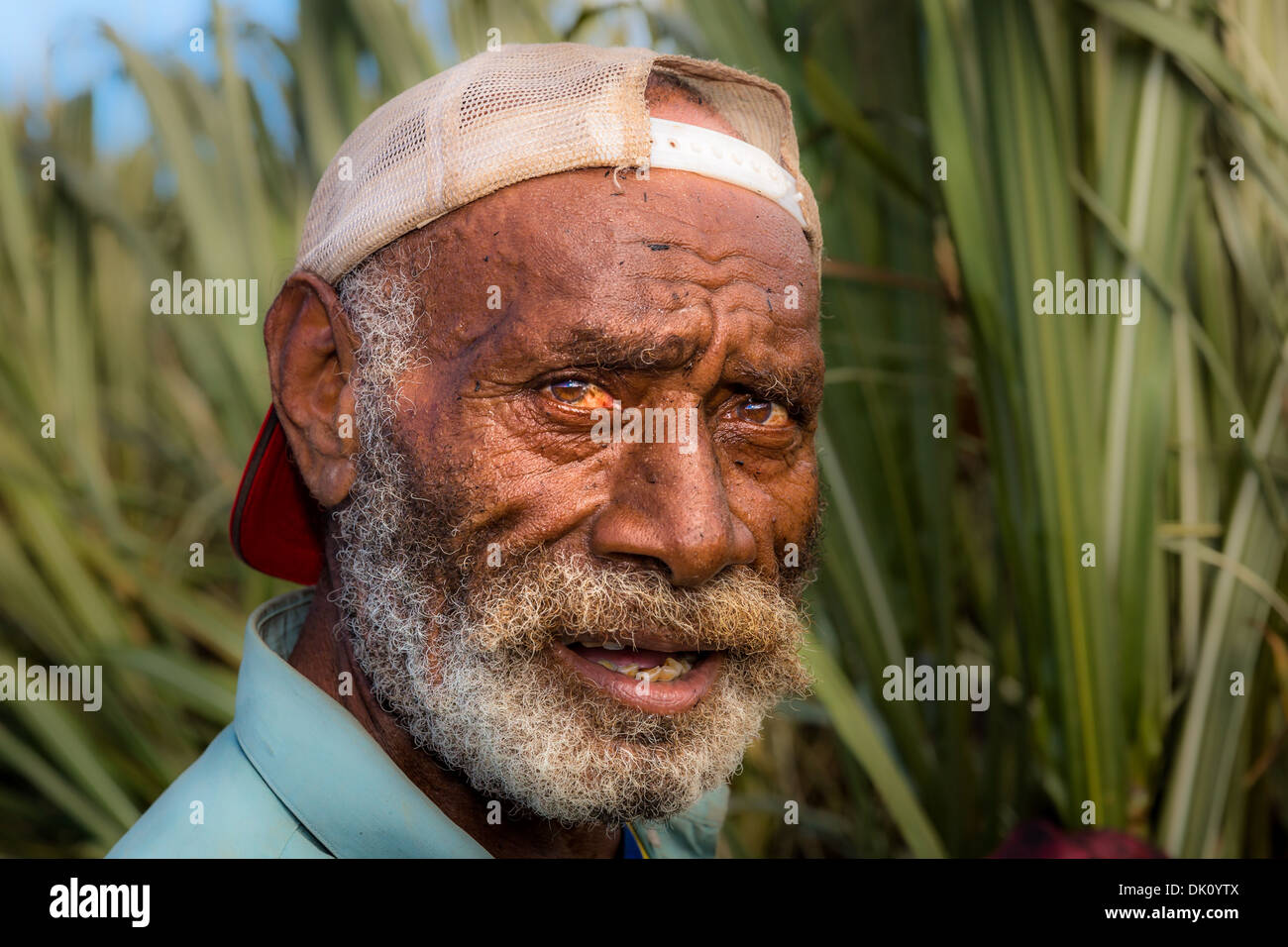 Farm worker on a field of sugar cane, Sigatoka, Viti Levu, Fiji, Oceania - Stock Image