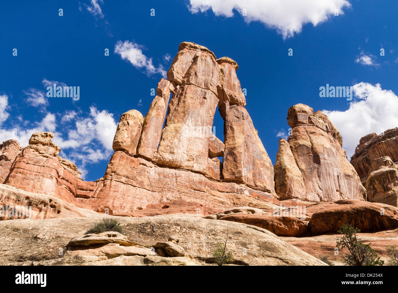 Iconic Druid Arch in Elephant Canyon with puffy clouds in the Needles District of Canyonlands National Park, Utah - Stock Image