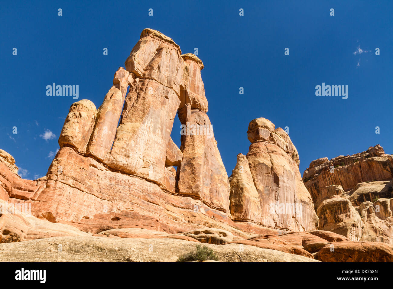 Iconic Druid Arch in Elephant Canyon seen from the west side in the Needles District of Canyonlands National Park, Utah - Stock Image