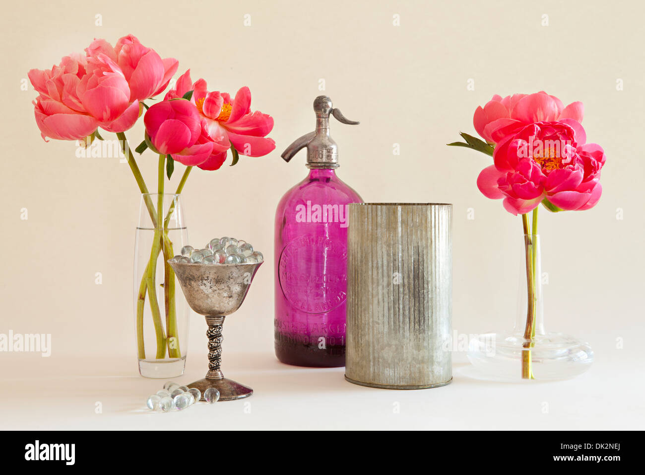 Still life of pink peonies in vases next to seltzer bottle and silver containers - Stock Image