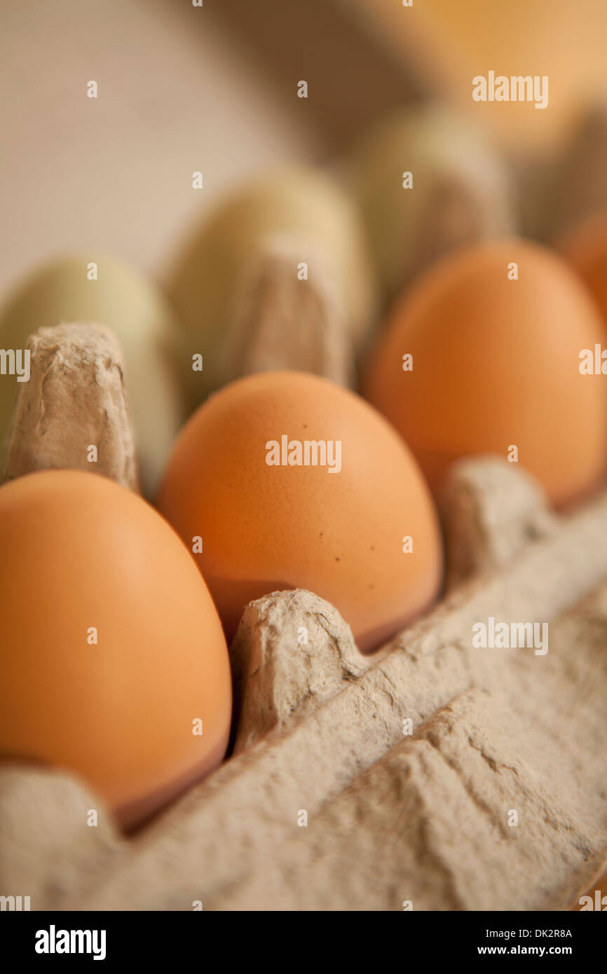 Close up of organic brown eggs in carton Stock Photo