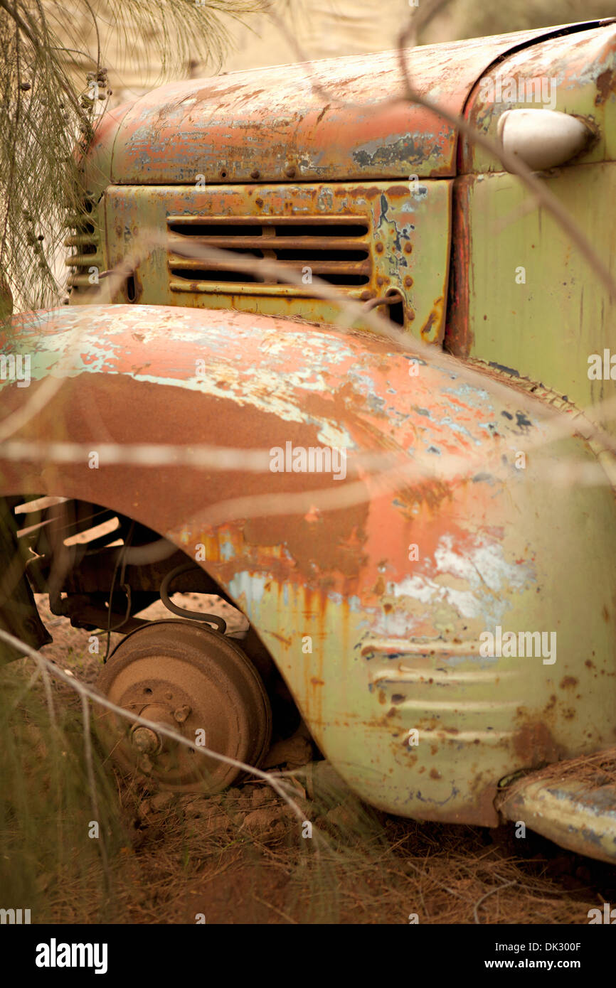 Rusted abandoned green truck - Stock Image