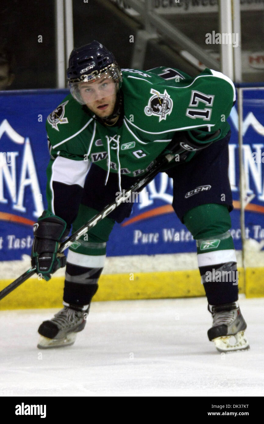 Feb. 26, 2011 - Plymouth, Michigan, U.S - Plymouth defenseman Beau Schmitz (#17) waits for a faceoff. The Plymouth Whalers defeated the London Knights by a score of 7-2. (Credit Image: © Alan Ashley/Southcreek Global/ZUMAPRESS.com) - Stock Image