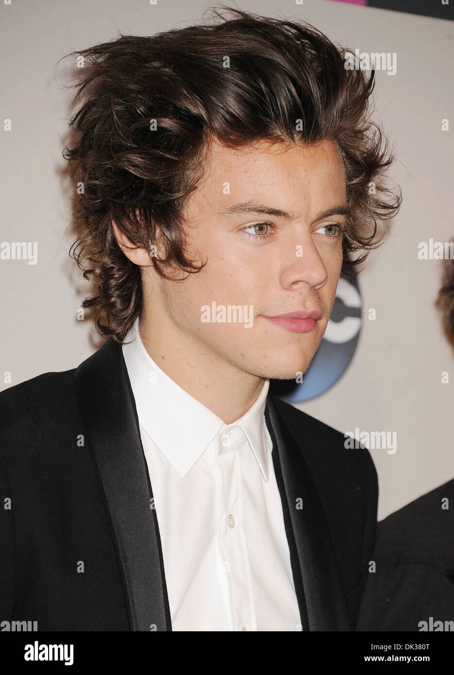 ONE DIRECTION singer Harry Styles in November 2013. Photo Jeffrey Mayer - Stock Image