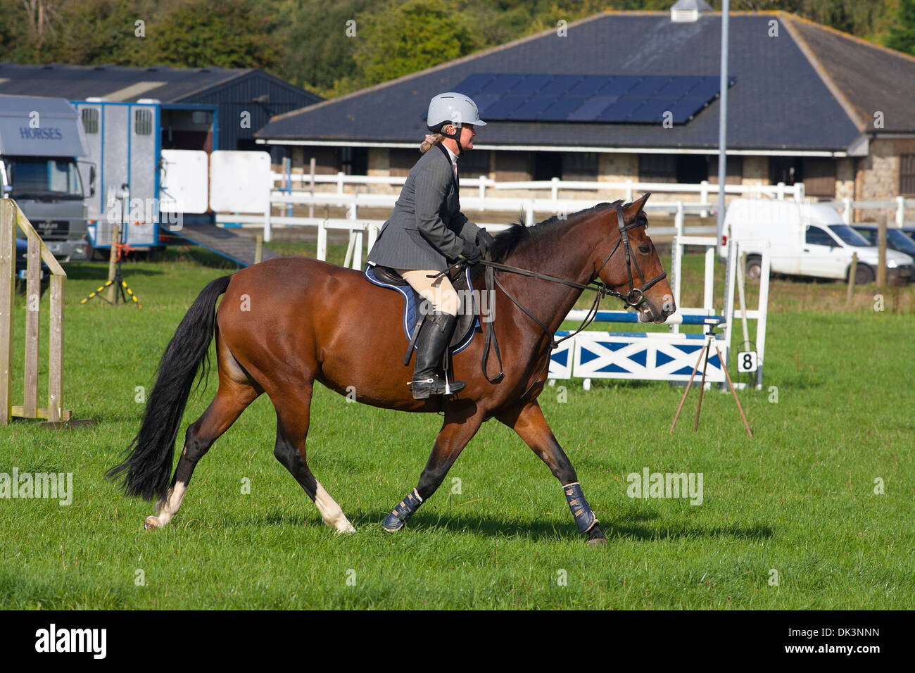 Horse Jumping eventing cross country equine sport jump show rural farm box gray gymkhana Godshill Isle of Wight England UK - Stock Image