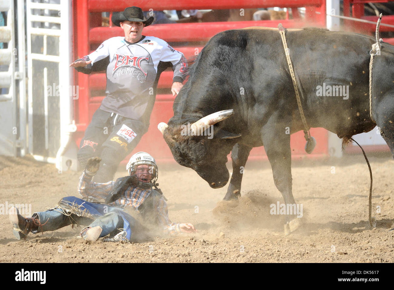 Apr. 23, 2011 - Clovis, California, U.S - Brady Scott Williams of Snelling, CA gets bucked off Smokin' Aces at the Clovis Rodeo. (Credit Image: © Matt Cohen/Southcreek Global/ZUMAPRESS.com) - Stock Image