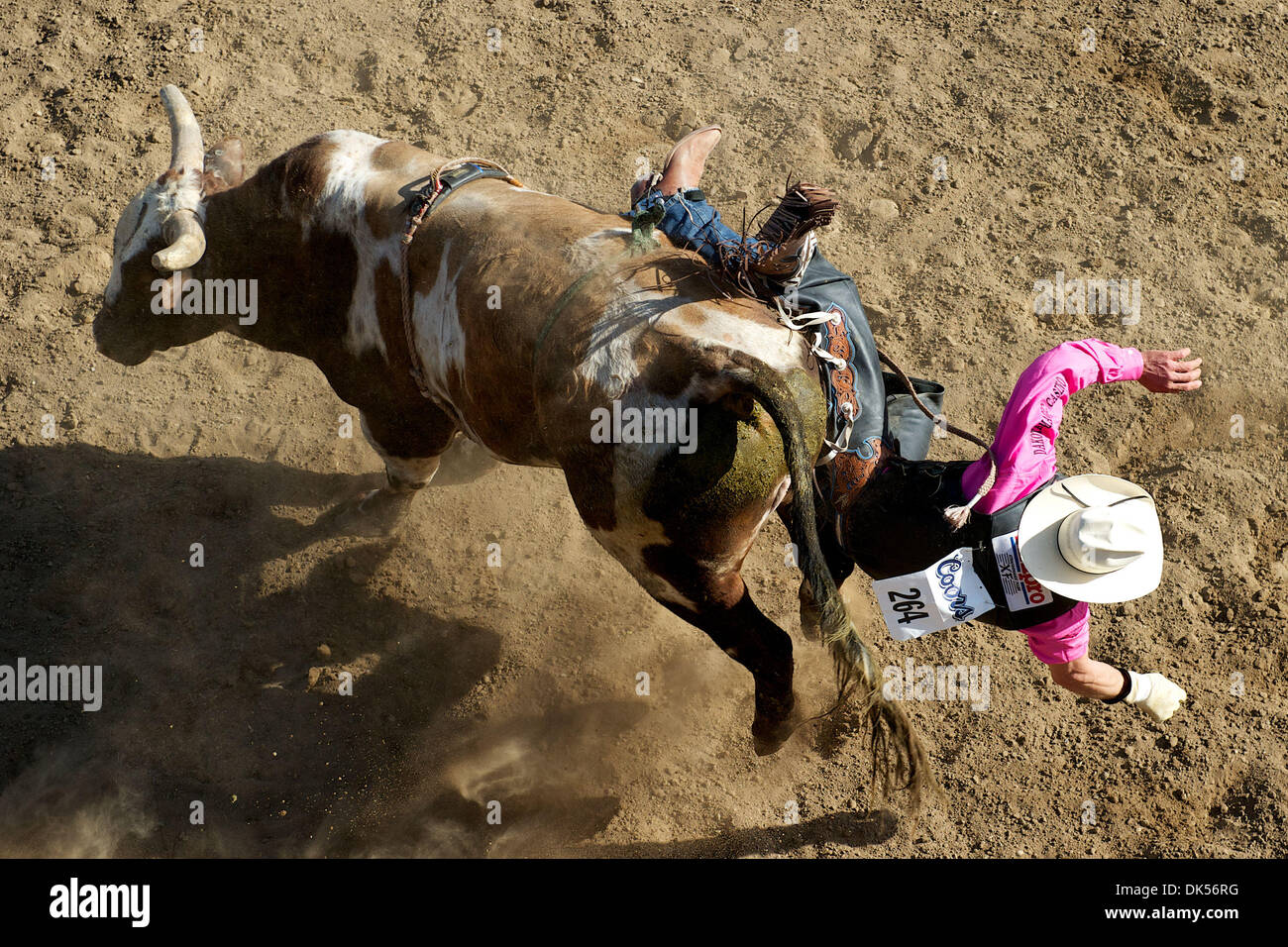 Apr. 24, 2011 - Clovis, California, U.S - ARDIE MAIER of Timber Lake, South Dakota, gets bucked off Mean One at the Clovis Rodeo. (Credit Image: © Matt Cohen/Southcreek Global/ZUMAPRESS.com) - Stock Image