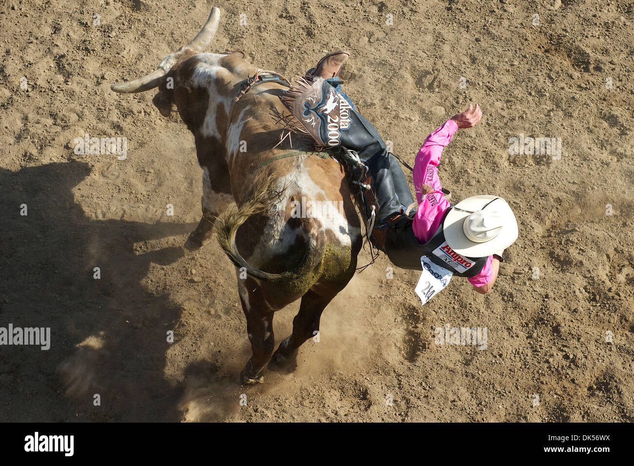 Apr. 24, 2011 - Clovis, California, U.S - Ardie Maier of Timber Lake, SD gets bucked off Mean One at the Clovis Rodeo. (Credit Image: © Matt Cohen/Southcreek Global/ZUMAPRESS.com) - Stock Image
