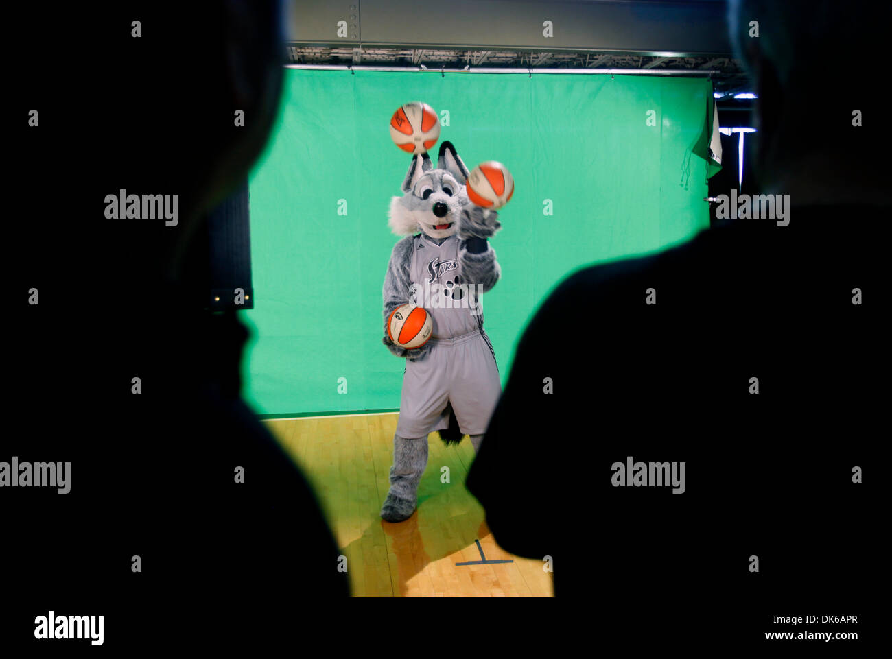 May 19, 2011 - San Antonio, TEXAS, USA - The WNBA's Silver Stars mascot, The Fox, performs in front of a green screen Wednesday May18, 2011 at their practice facility, the Antioch Baptist Church recreation center, during the team's media day. (Credit Image: © San Antonio Express-News/ZUMAPRESS.com) - Stock Image