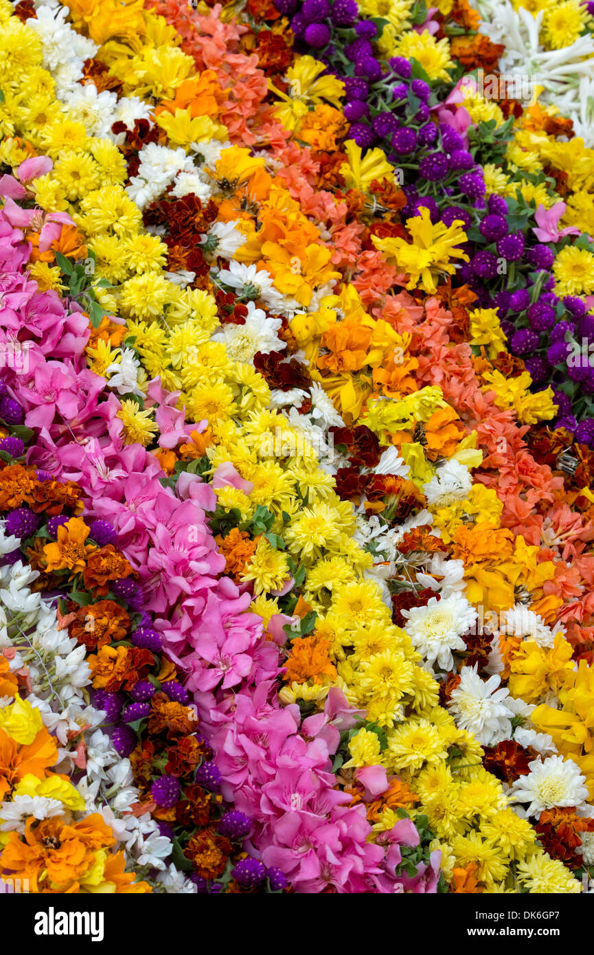 Colourful Indian flower garlands pattern - Stock Image