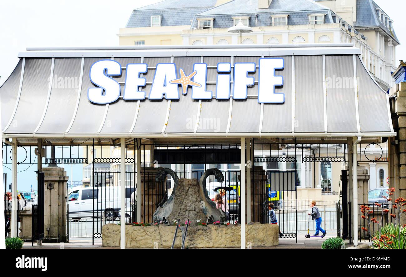 Brighton Sea Life Centre. - Stock Image