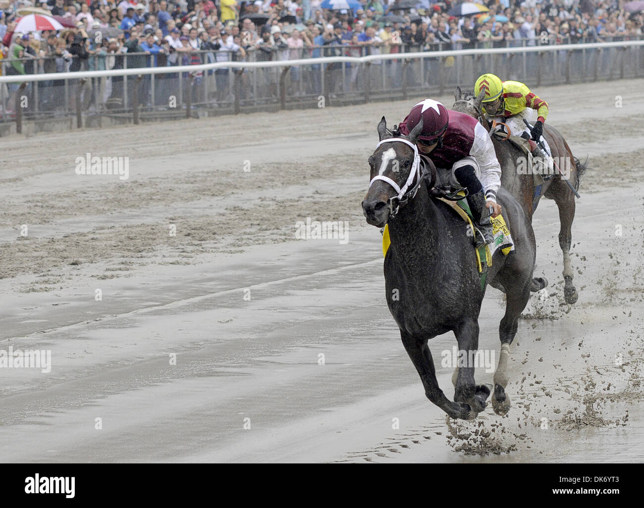 June 11, 2011 - Elmont, New York, U.S. - It's Tricky, ridden by Eddie Castro, rolls to victory in the TVG Acorn Stakes at Belmont Park on Belmont Stakes Day on June 11, 2011. (Credit Image: © Scott Serio/Eclipse/ZUMAPRESS.com) - Stock Image