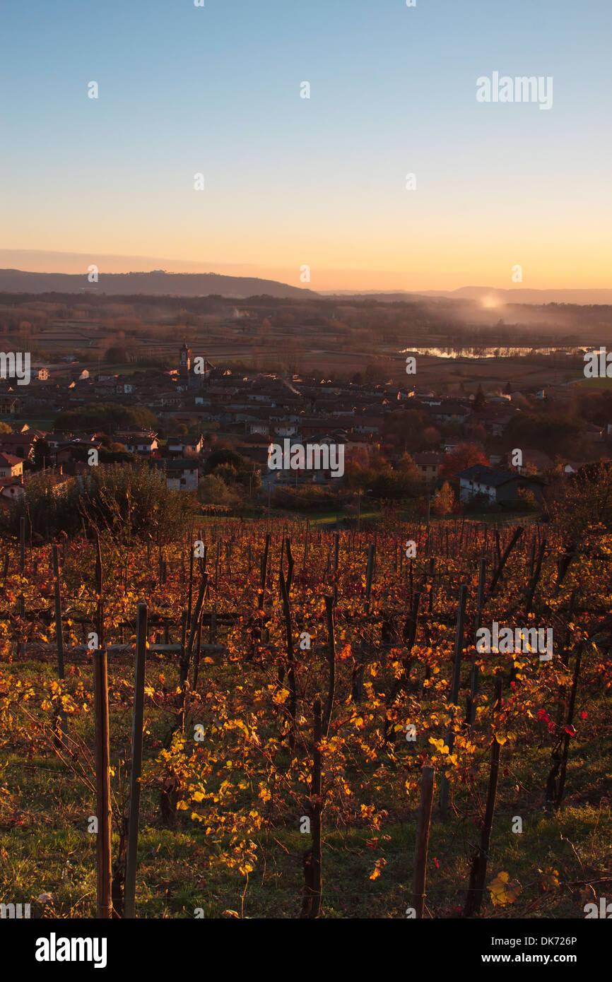 Sunset over Italian vineyard on autumn Stock Photo