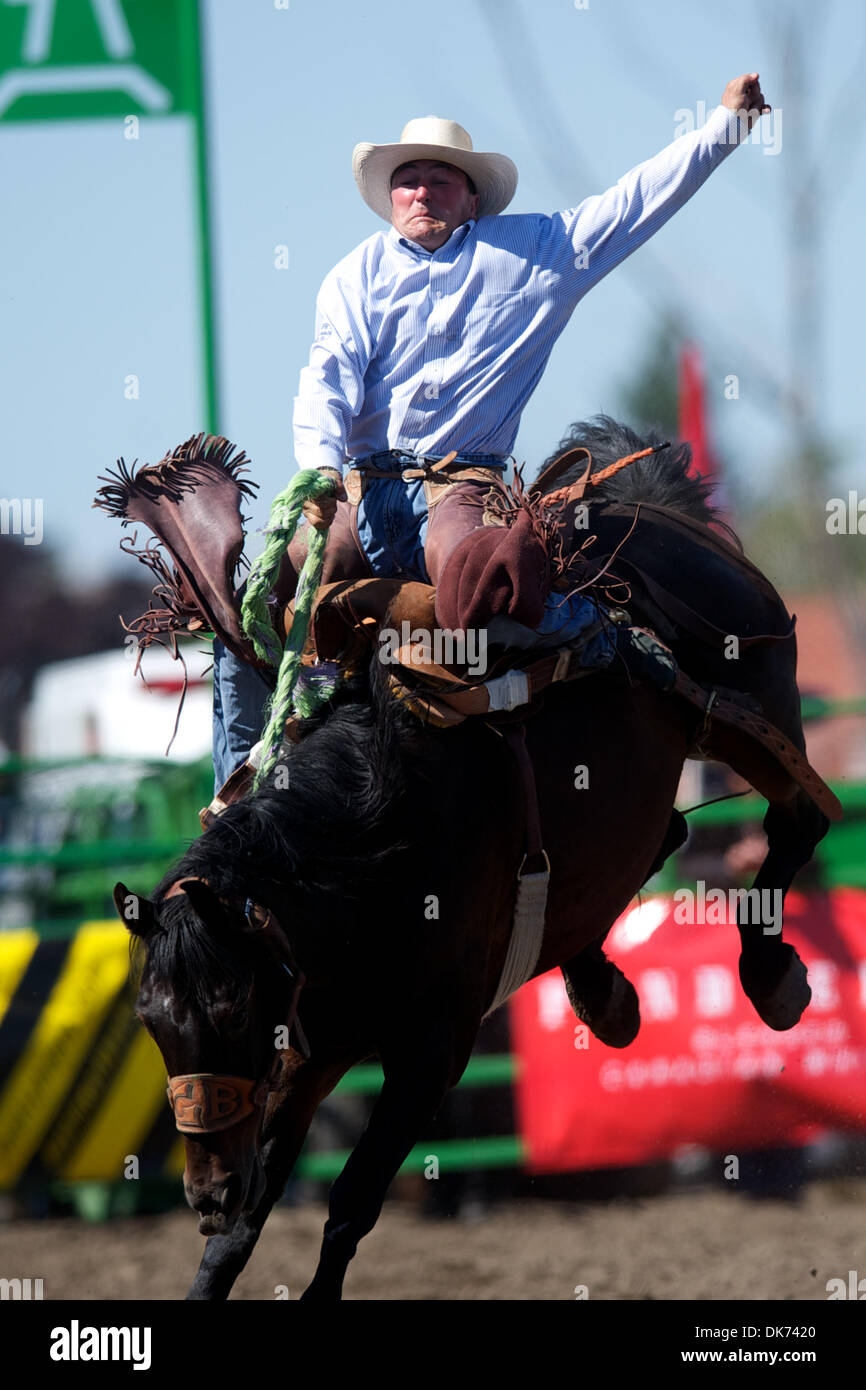 June 12, 2011 - Livermore, California, U.S - Joe Heguy of Elko, NV rides Billy the Kid at the 93rd Annual Livermore Rodeo at Robertson Park in Livermore, CA. (Credit Image: © Matt Cohen/Southcreek Global/ZUMAPRESS.com) - Stock Image