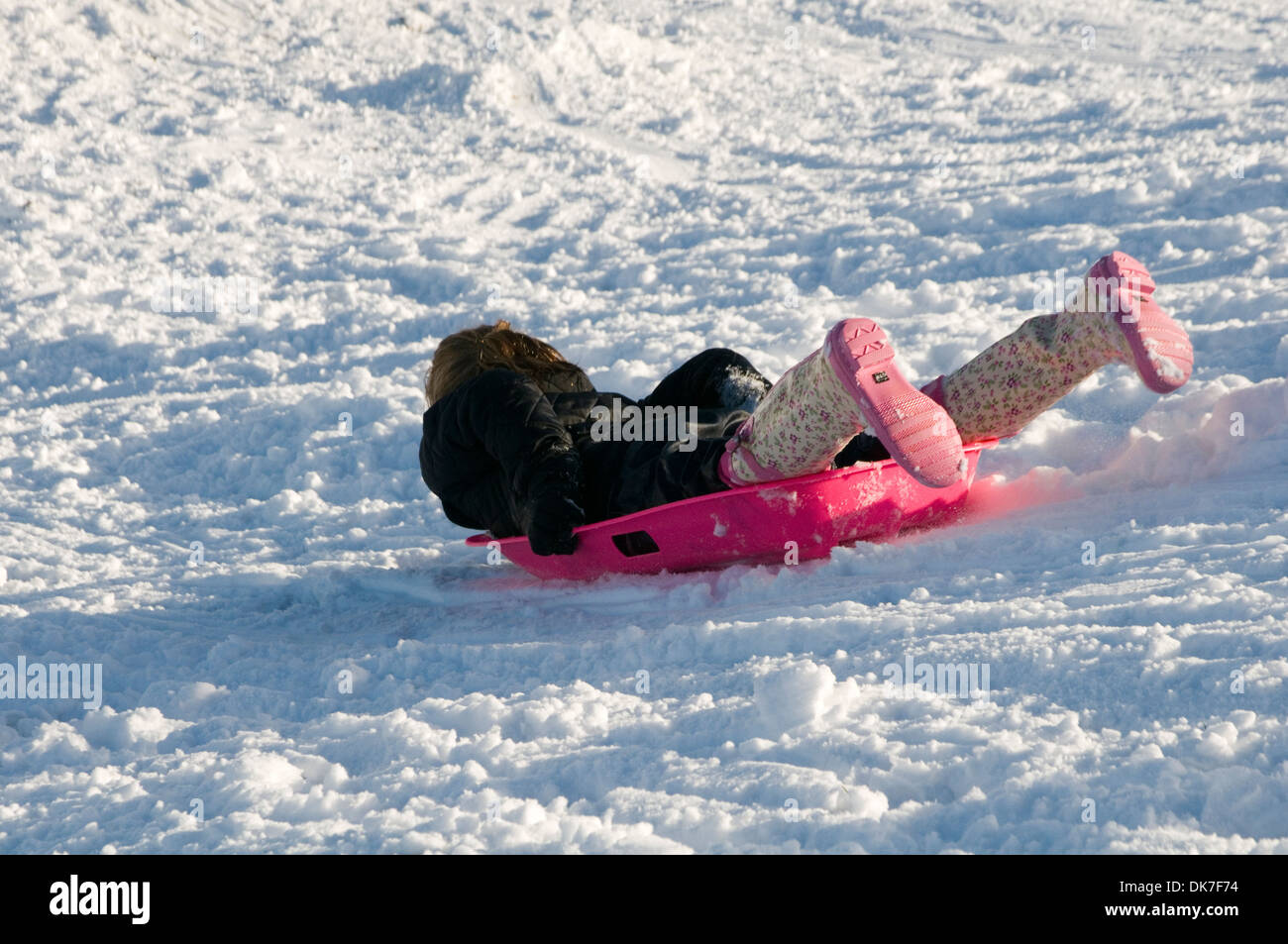 sledging uk snow sledge sledges people children kids playing in the slide cold winter weather chilly frozen snowing fall falls - Stock Image