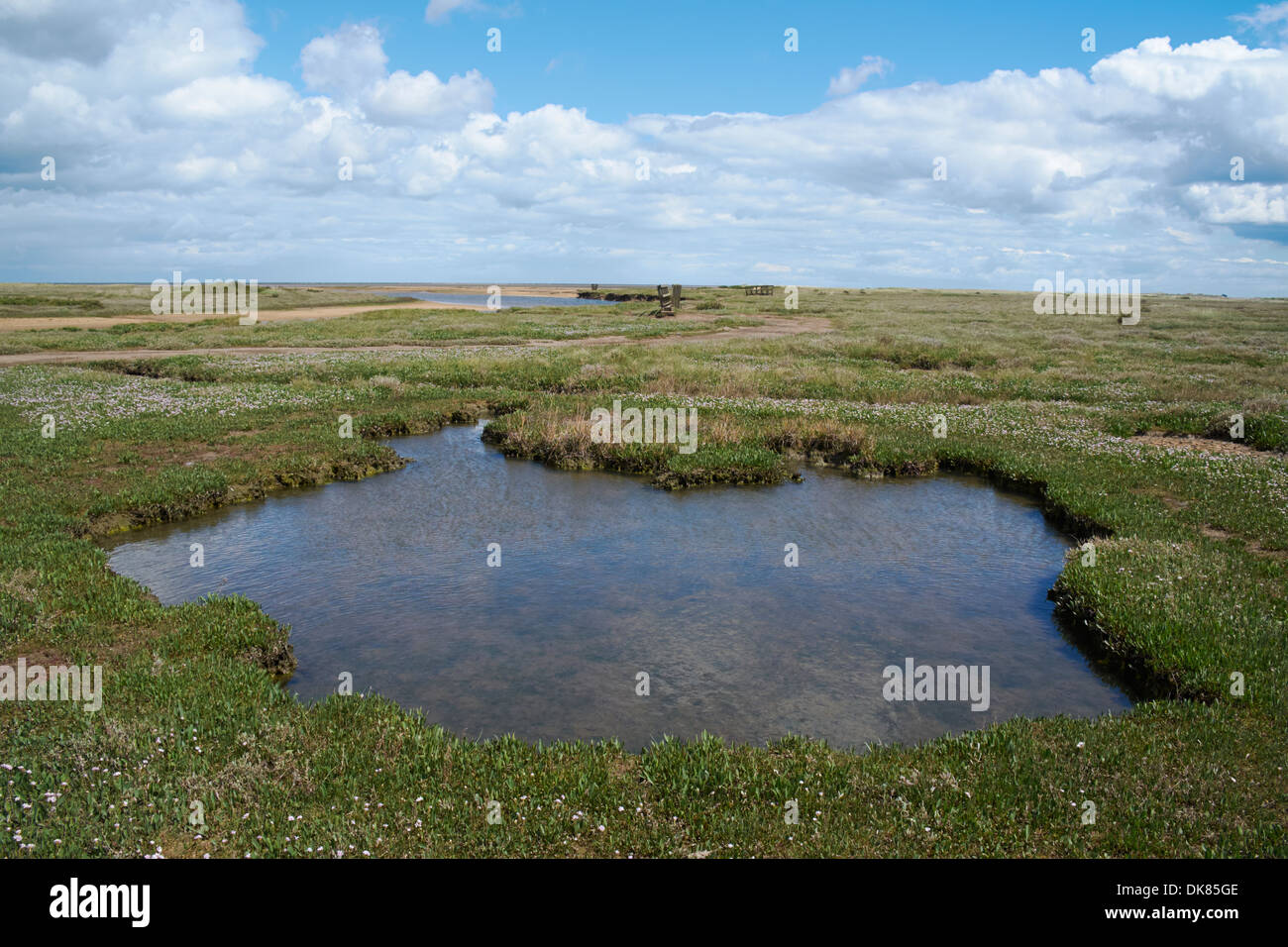 Stiffkey Saltmarshes, Norfolk, England. Stock Photo