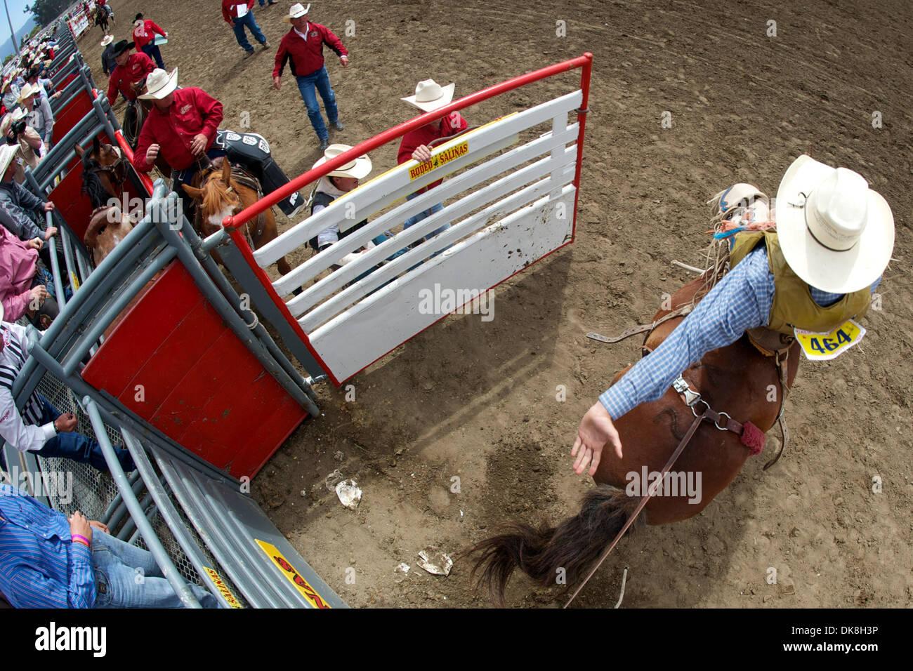 July 23, 2011 - Salinas, California, U.S - Saddle bronc rider Jeff Rianda of Tres Pinos, CA rides Smokin' Smurf at the California Rodeo Salinas in Salinas, CA. (Credit Image: © Matt Cohen/Southcreek Global/ZUMAPRESS.com) - Stock Image