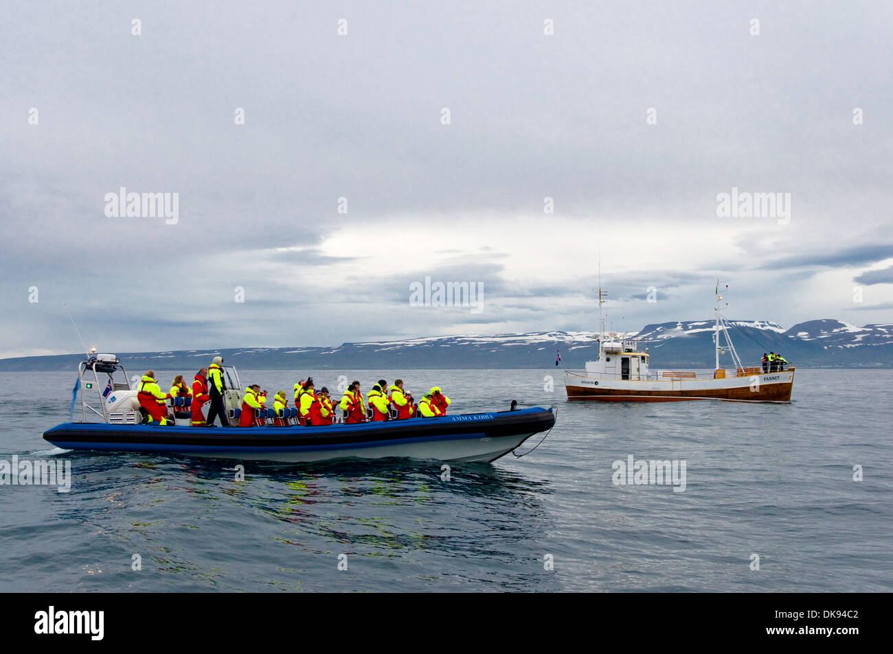 Whale Watching, Husavik, Iceland - Stock Image