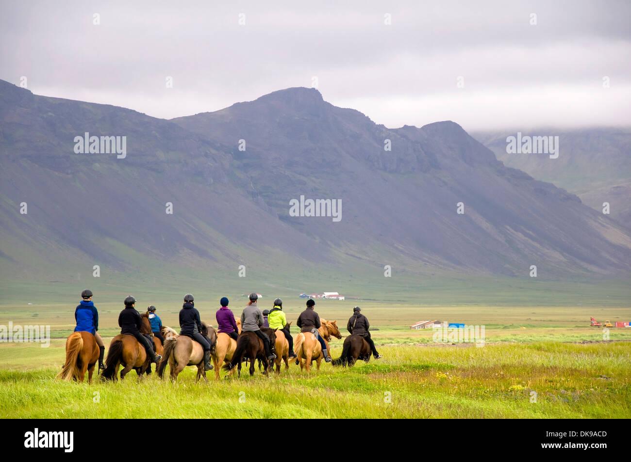 Pony Trekking, Budir, Snaefellsnes, Iceland - Stock Image