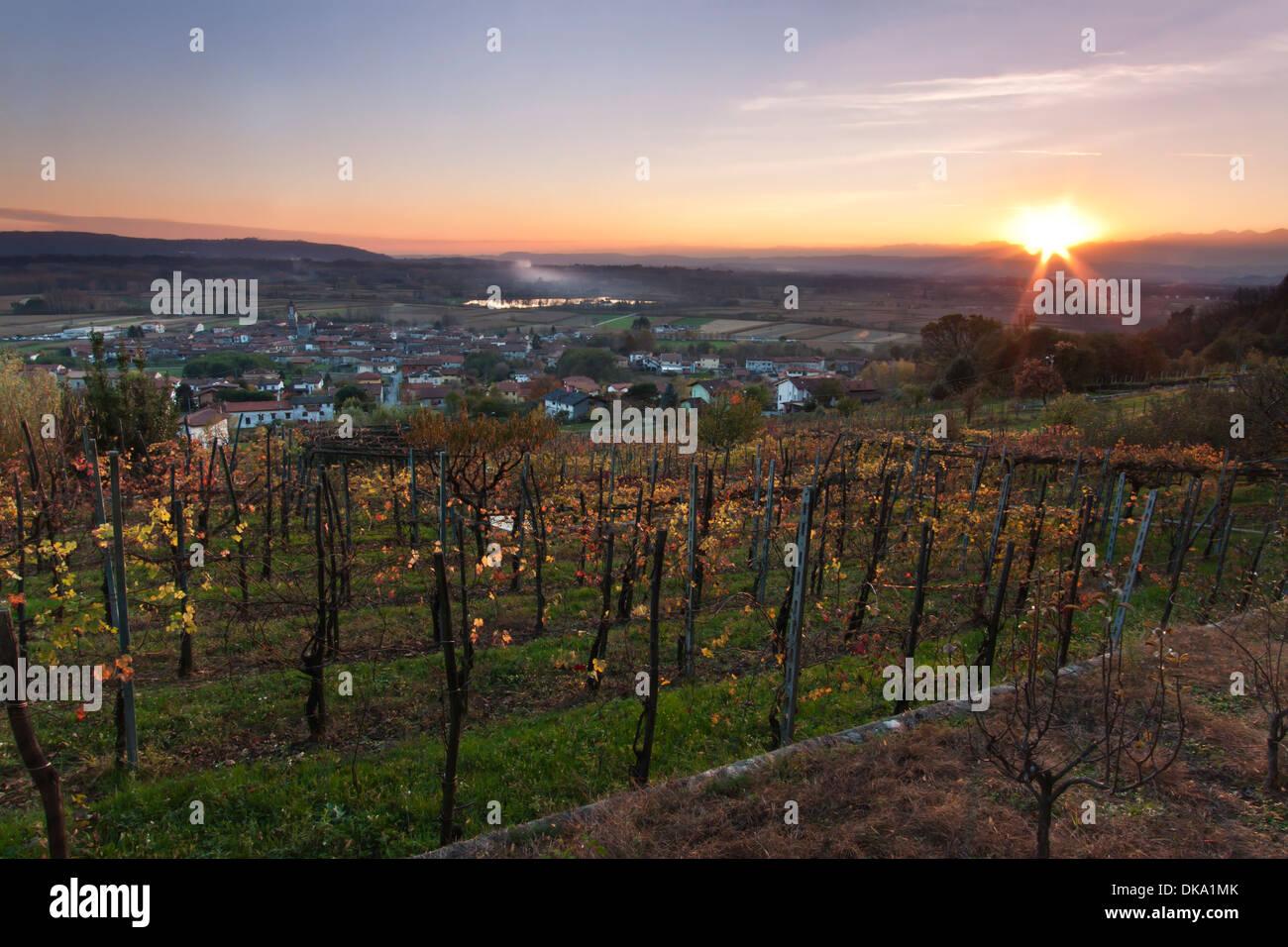 Sunset over Italian vineyard - Piedmont Stock Photo