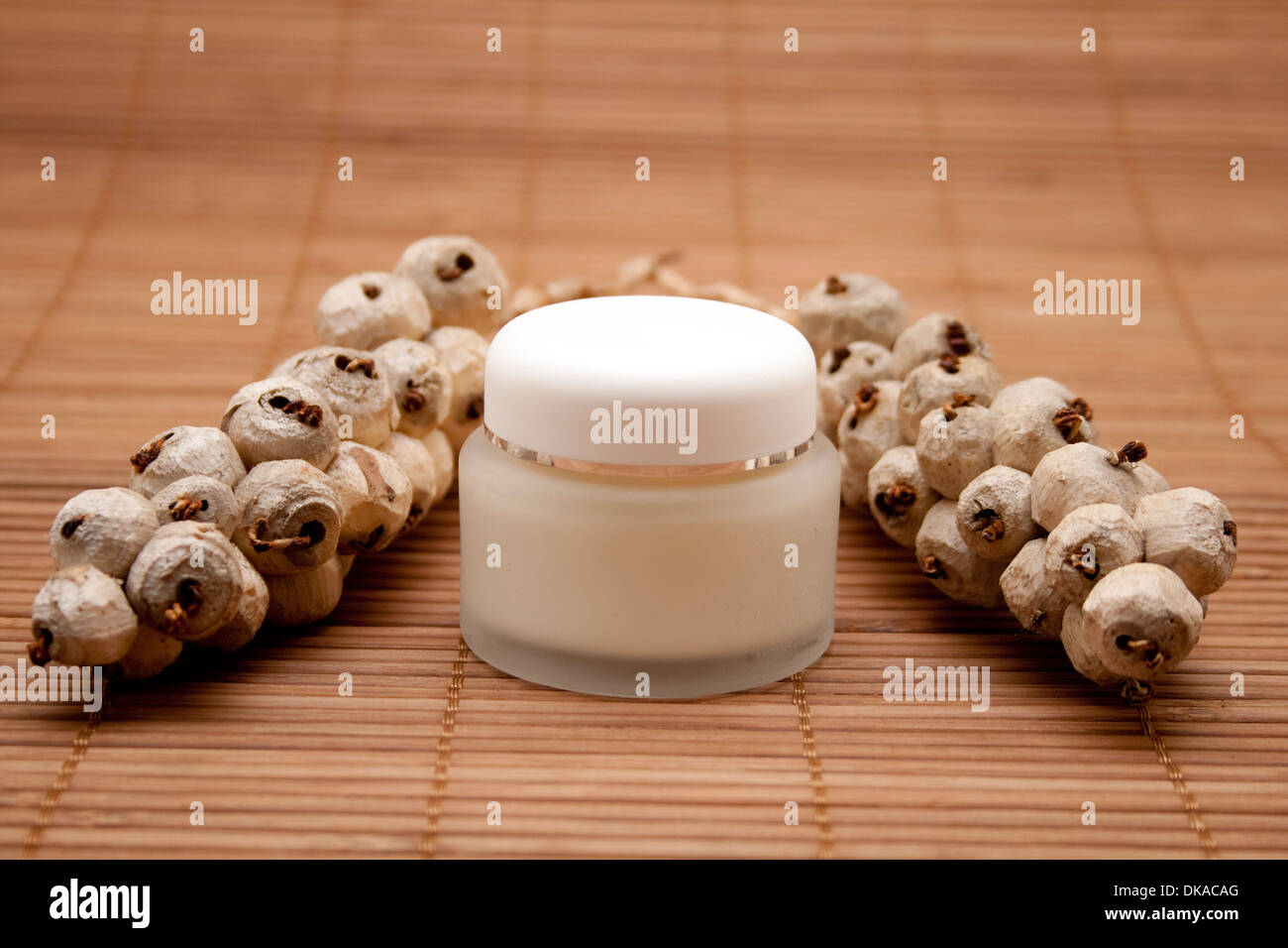 Face cream with berry branch - Stock Image