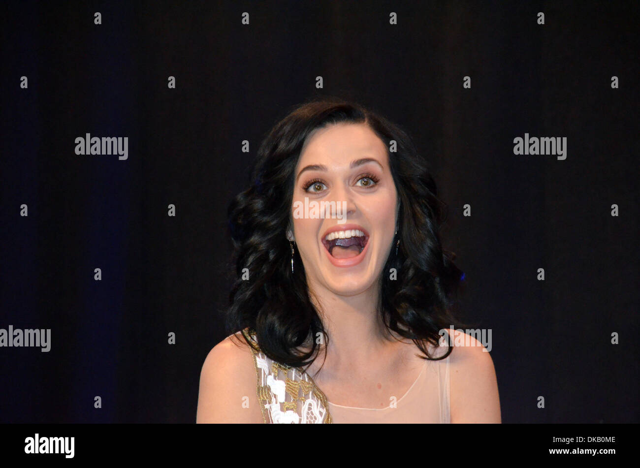 New York City, New York, USA. 03rd Dec, 2013. Pop singer Katy Perry talks at the Unicef headquarters in New York City, New York, USA, 03 December 2013. Perry was appointed as a good will ambassador by the United Nations Children's Fund (UNICEF). Her song 'Unconditionally' came out in the middle of October a result of her trip to the UNICEF camp in Madagascar. Photo: CHRIS MELZER/dpa/Alamy Live News - Stock Image