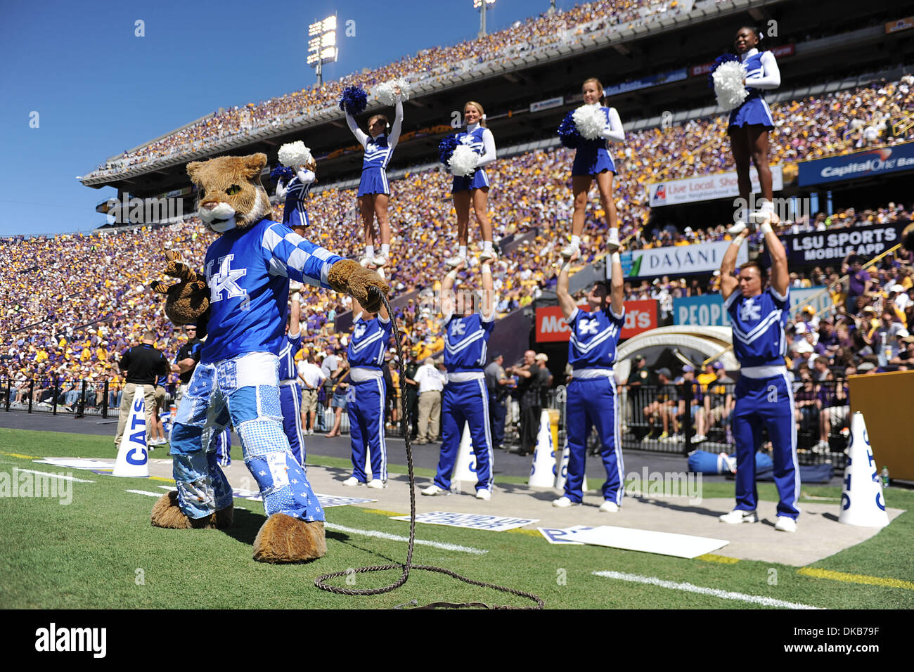 kentucky wildcats mascot and cheerleaders lead cheers for their