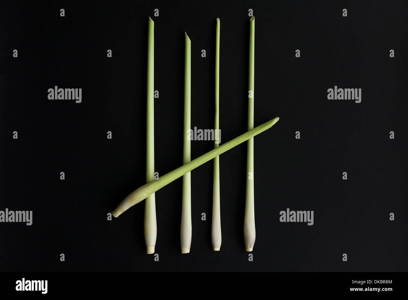 A five bar gate, No. 5, Number 5, 5 pieces of lemongrass on a black background. - Stock Image