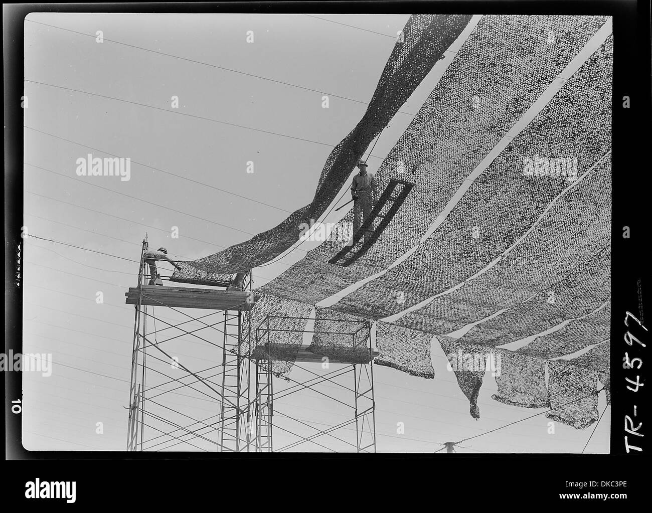 Camouflage netting at Consolidated Vultee aircraft plant, San Diego, Cal. 520979 - Stock Image