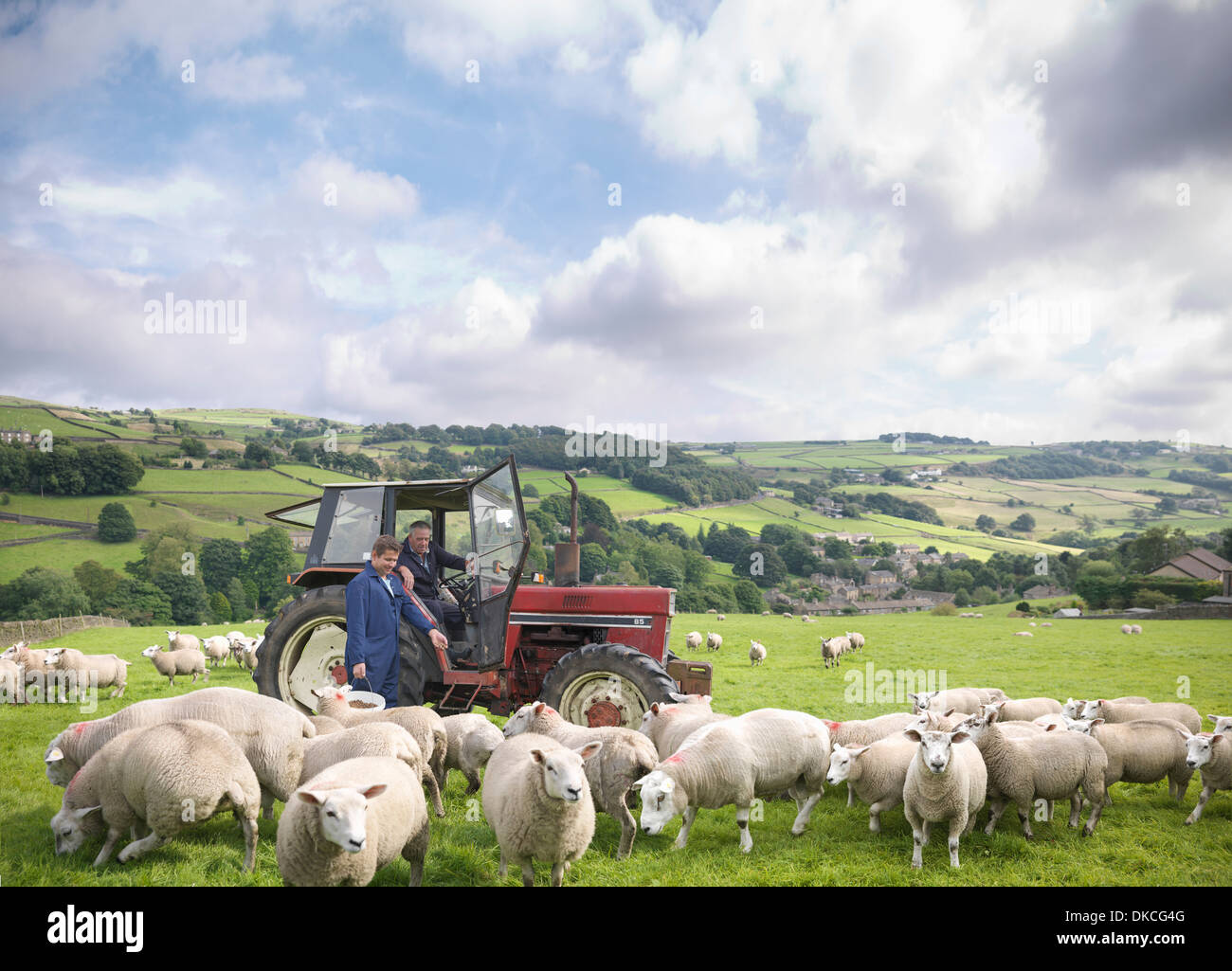 Farmer in tractor with son watching sheep in field - Stock Image
