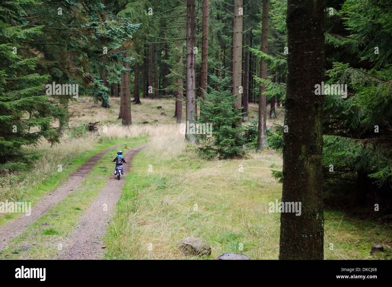 Kid cycling in the forest on a rainy day seen from behind - Stock Image