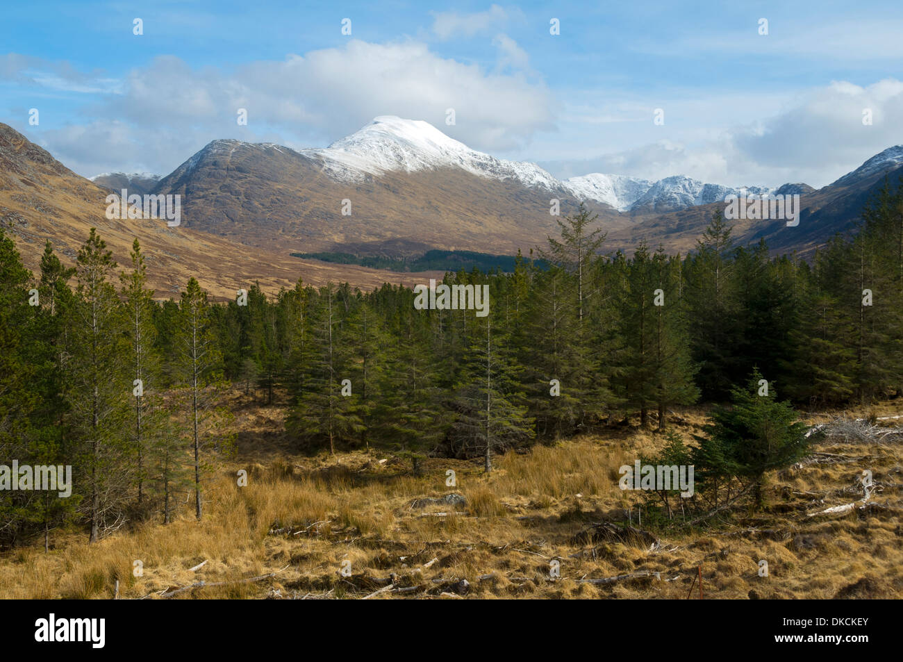 Ladhar Bheinn and upper Glen Guiserein, Knoydart Peninsula, Highland Region, Scotland, UK Stock Photo