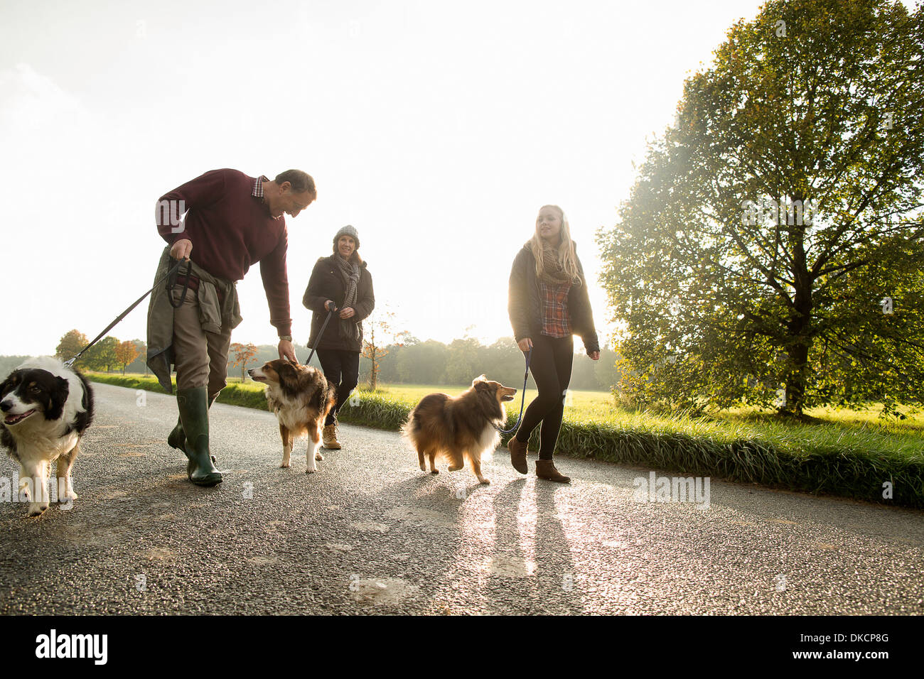 Senior couple and granddaughter with dogs, Norfolk, UK - Stock Image
