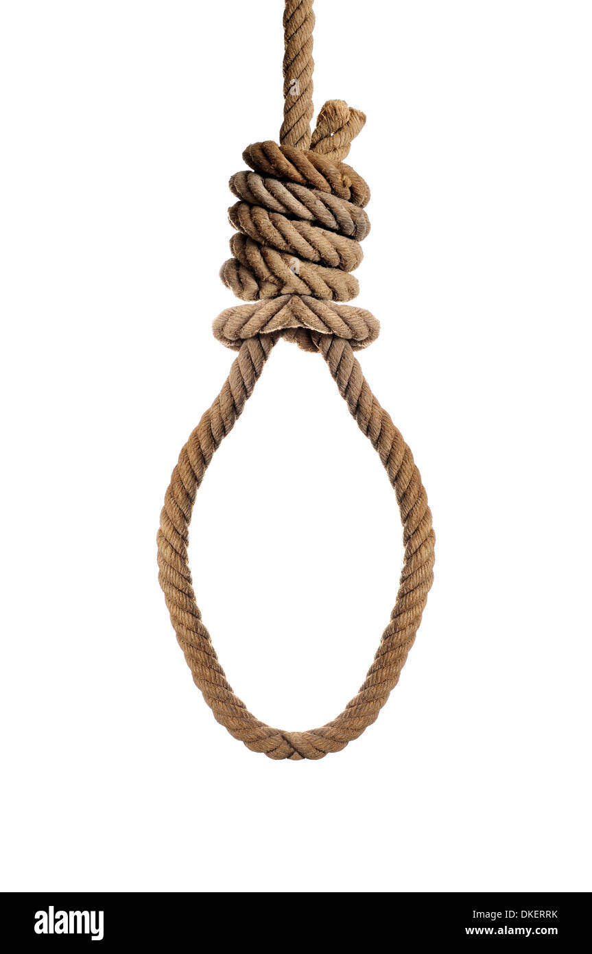 an old hemp rope with a hangmans noose on a white background - Stock Image
