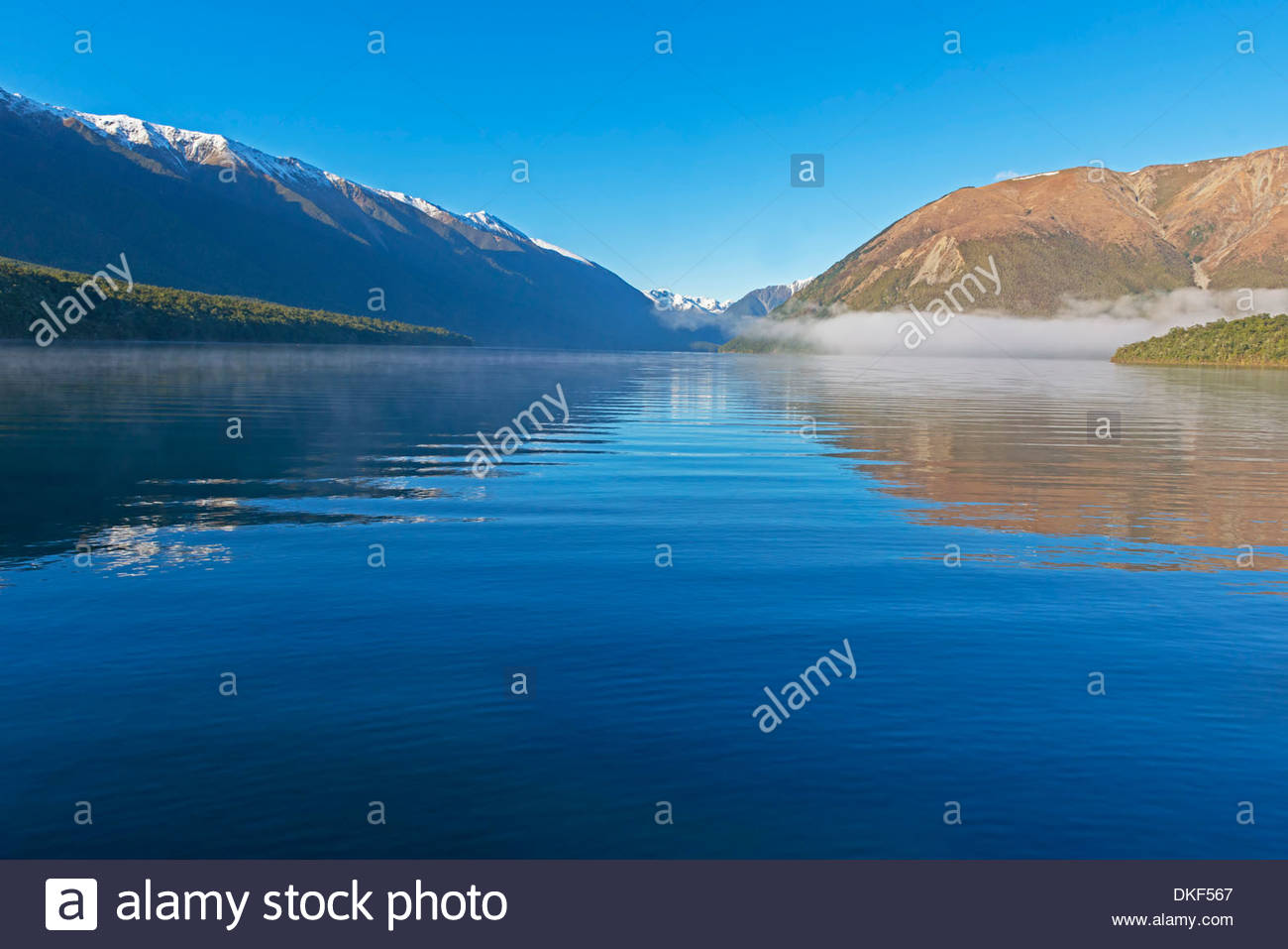 Reflections on lake Rotoiti, Nelson Lakes National Park, South Island, New Zealand - Stock Image