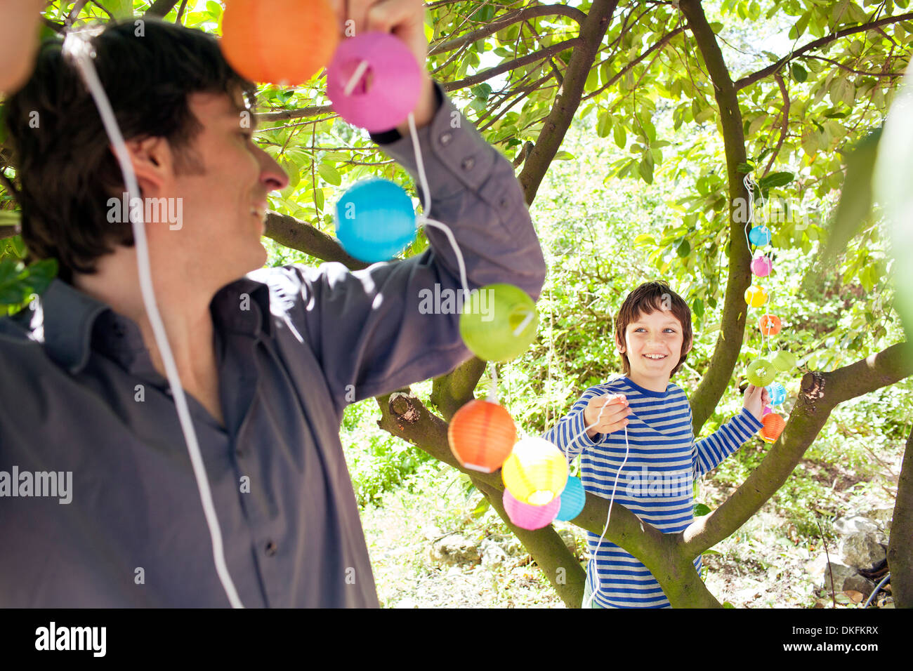 Father and son putting fairy lights in tree Stock Photo