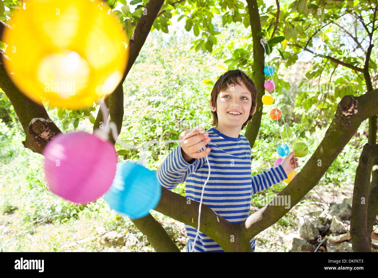 Boy putting fairy lights in tree Stock Photo